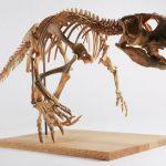 פסיטקוזאורוס